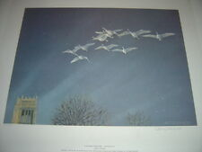 In the Light of Mount Mary Whistling Swans - by Owen Gromme Limited Ed Print