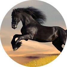 4x4 Spare Wheel Cover 4 x 4 Camper Graphic Sticker Horse Black Stallion Horse H1
