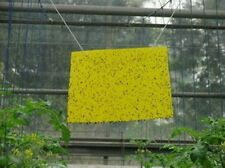 10 x Yellow Insect Sticky Board Aphid Whitefly Fruitfly Leafminer Thrip Catch