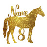 Personalised Horse Cake Topper Decoration Birthday. Any name, age, colour