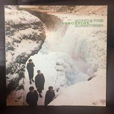 "echo and the bunnymen Porcupine vinyl Record Album 12"" LP (VG/VG)"