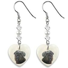 Bouvier Des Flandres Dog 925 Silver Heart Mother Of Pearl Dangle Earrings Ep159