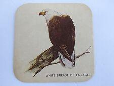 Beer Bar Coaster ~ CHARLES WELLS Brewery Eagle Bitter ~ White Breasted Sea Eagle