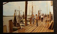 1950's POSTCARD-SHRIMP AND CRAB FLEET, BRUNSWICK, GEORGIA-MINT!!