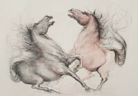 Italian Horse Art Etching Hand Colored Signed