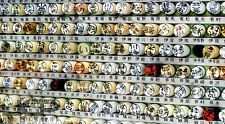 Japanese Family Name Seal Okinawa Hanko Inkan Stamp Ryukyu Last Name Stamps