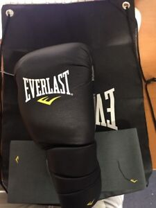 EVERLAST L/XL C4 Foam Technology! With Bag And Two Pads New /one Glove RH.