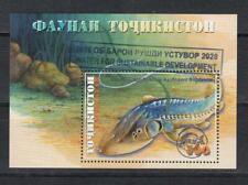 Fish Tajikistan 2018 MNH** 806 Bl.81 Surcharge for Water development Fisch