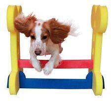 Rosewood Dog Agility Training Supplies