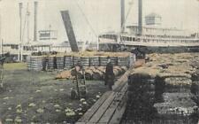 Cotton Wharf, New Orleans, Louisiana Steamboats ca 1910s Vintage Postcard