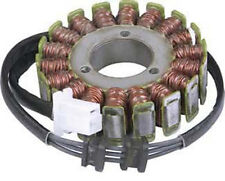 RICKS 2003-2005 Ducati Monster 1000 STATOR DUCATI 21-017