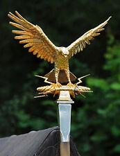 Roman Aquila Eagle POSTCARD Army Gold Bird Steve Greaves Print Card Photo SPQR