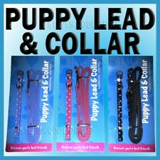 SMALL DOG new PUPPY LEAD & COLLAR SET LEASH Polka Dots BLACK FAUX LEATHER