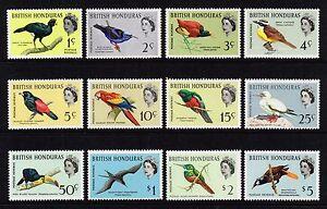 British Honduras 1962 birds set, MNH (SG202/213)