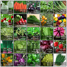 5 Pack Lot Type Vegetable Fruit Seeds Garden Organic Survival Plant Seed Choose