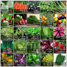 Variety kinds of Vegetable Garden Fruit Seeds Organic Survival Plant Seed CHOOSE