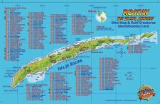Roatan Dive Map & Reef Creatures Guide Laminated Fish Card by Franko Maps