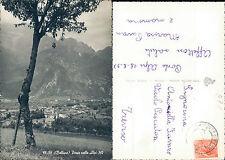 BELLUNO,PONTE NELLE ALPI,VIAGGIATA-F.G.-VENETO(BL)N.42328