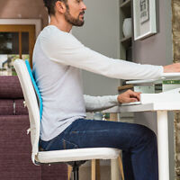 BACK Backboard - Adjustable Chair Lumbar Support – Pain Free, Perfect Posture!