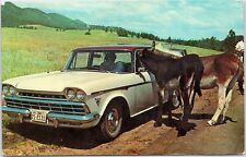 Rambler Rebel driver with Donkey in car in Black Hills, South Dakota Posted 1965