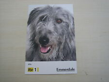 Alfie (The Dog in Emmerdale) RARE *FREE POST*