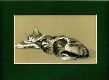 Lucy Dawson ~ Cat and Kittens ~ Colour Print. Genuine Vintage 1946