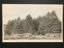 Antique REAL PHOTO POSTCARD c1907-18 Pine Woods MARSHFIELD, VT Vermont (20609)