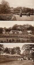 3 Pittencrieff Dunfermline Band Tea Rooms Conservatories unused old pcs W Allen