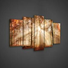 Canvas Picture Print Set  10471_PS17 Autumn Forest in the Sun Wandbild Set Leinw