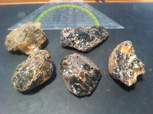 105g Bernstein Indonesien Sumatra UV blauer roh Rohsteine Mineral Amber kg