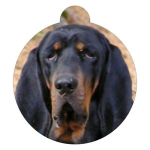 BLACK AND TAN COONHOUND Breed Picture Pet ID tag