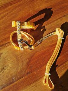 Tiny XXS Dog Harness Lead Set Rhinestone Adjustable Puppy Chihuahua Cat yellow