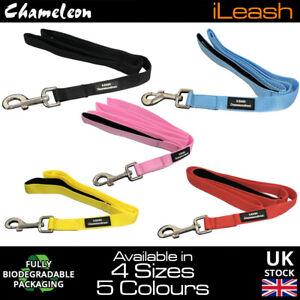Lifetime guarantee Neoprene Padded handle dog lead leash 4 & 6 Foot 1.2m-1.8m