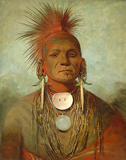 George Catlin's Indian Gallery: See-non-ty-a, Iowa Medicine Man - Fine Art Print
