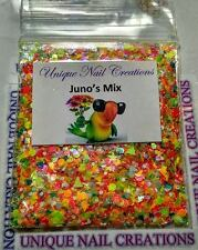 Limited Edition Glitter Mix~JUNO'S MIX* Comes With Alloy~ Nail Art