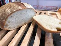 "SAN FRANCISCO SOURDOUGH STARTER yeast ""sally"" + tips/tricks recipes FRESH BATCH"