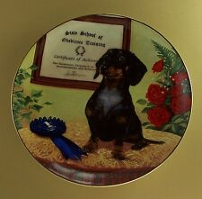 The Graduate Dachshunds Plate Dog Puppy Danbury Mint Christopher Nick Charming!