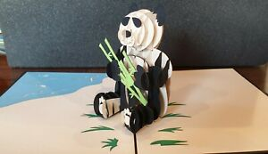 Cuties 3DPop Up Panda Bear Card.( Birthday, Get Well, Congrats, Thank you Card