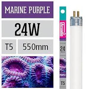 Arcadia Navy Purple T5 24Watt 21 21/32in Especially for The
