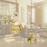 Bulb Ball Shaped Glass Hanging Plant Terrarium Flower Vase Wall Wedding Decor Jэ