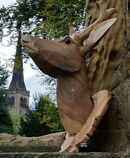 Carved Hard Wood Stag Head Wall Mounted Wooden Stags Rain Deer Antler Plaque