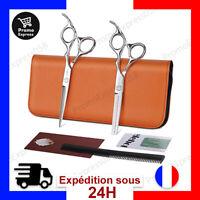 Ensemble Kit Ciseaux Coiffeur Coiffure Cheveux Amincissement Désépaissir Peigne