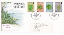 Guernsey 1975 Ferns FDC with enclosure VGC