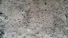 ❤️ 3 kg reine Holzasche ❤️ aus unbehandeltem Holz ❤️ Dünger für Garten ❤️