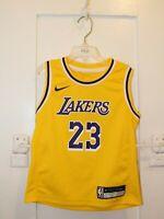 NIKE LeBron James #23 Los Angeles Lakers Icon Edition Gold Swingman Jersey BOYS