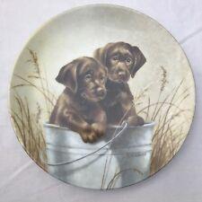 Knowles Pail Pals Chocolate Labrador Puppy Collector Plate Kaatz