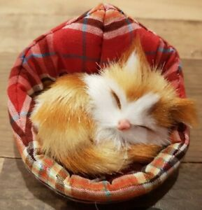 Cute little sleeping ginger and white kitten cat on cushion, new with label