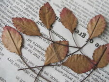 100 Rose Leaves Autumn Brown 14mm width Wire Stem Mulberry Paper Craft R3B