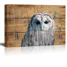 Double Exposure Rustic Canvas Wall Art - An Owl - Giclee Print - 12x18 inches
