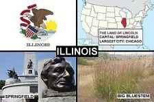 SOUVENIR FRIDGE MAGNET of THE STATE OF ILLINOIS USA